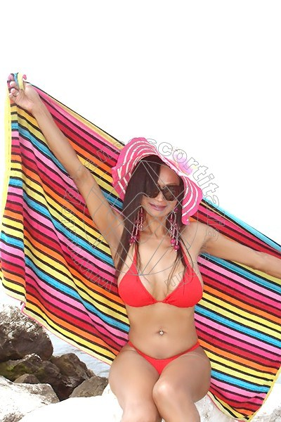 Farfalla Lopes QUARTO D'ALTINO 3896627045